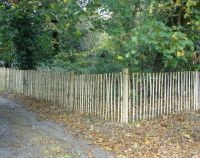 Chestnut Pale Fencing