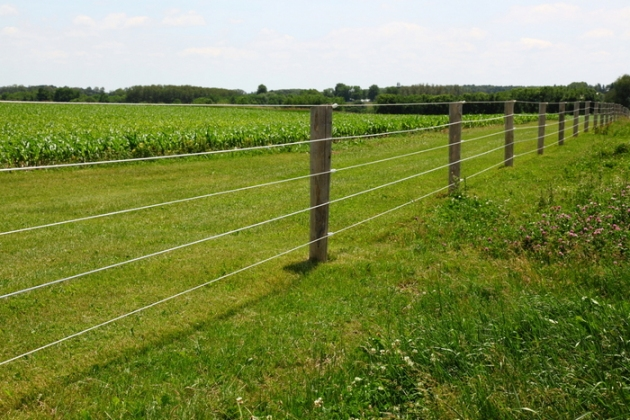 Post Amp Wire Fencing