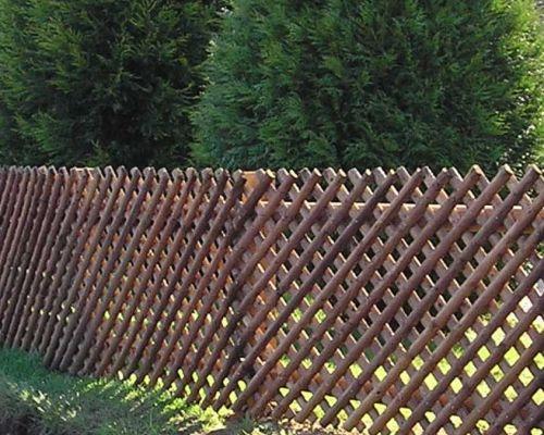 Trellis Fencing
