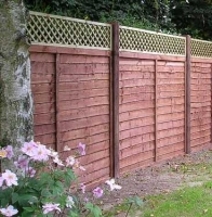 Panel Fencing with Trellis Tops