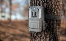 Cheap Bushnell Camera