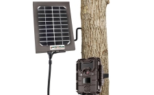 Bushnell solar panel. gardenature