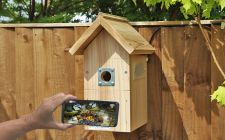 IP Camera Bird Box System - Pitched Roof