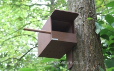 Kestrel box side fit |gardenature