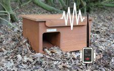 Hedgehog House with Wireless AHD Camera