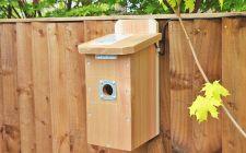HD Camera Nest Box System - Flat Roof