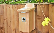 HD Camera Nest Box System - Flat Roof