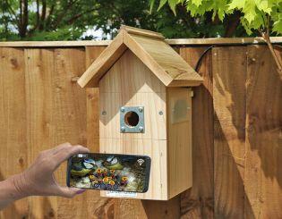 IP Camera Bird Boxes