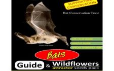 Bat guide and wildflower seeds