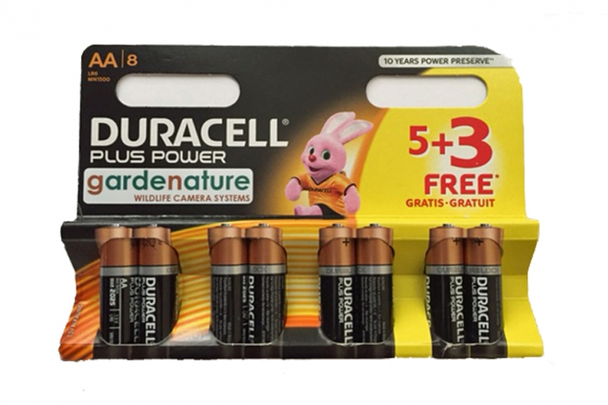 AA Duracell Plus Power. gardenature.co.uk