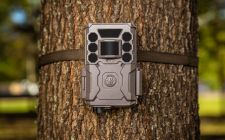 new bushnell cameras | gardenature