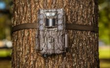 Core DS Bushnell LG Camera