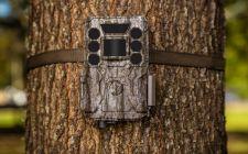 Bushnell Core ds No Glow Camera | Gardenature