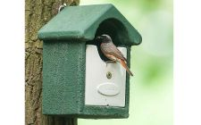 Vivara open fronted bird box