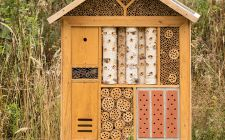 Corsica Insect Hotel
