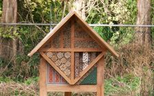 insect house | gardenature.co.uk
