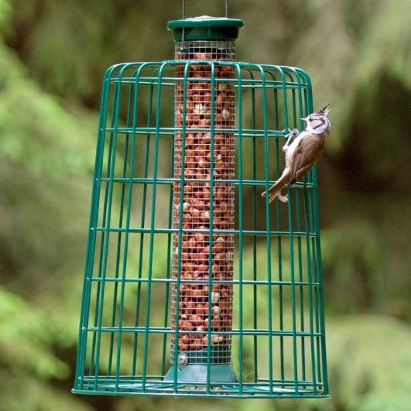 medium peanut feeder with squirrel guard