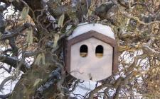 Deep nest box 1N -gardenature.co.uk