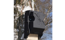 3FF Bat box | gardenature.co.uk