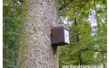 schwegler 2KS dormouse nest box