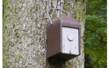 dormouse box | gardenature.co.uk
