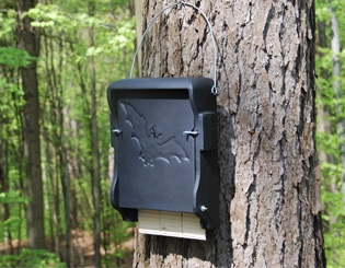 Schwegler Bat Boxes - Bat Tubes and Bat Roosts | Gardenature