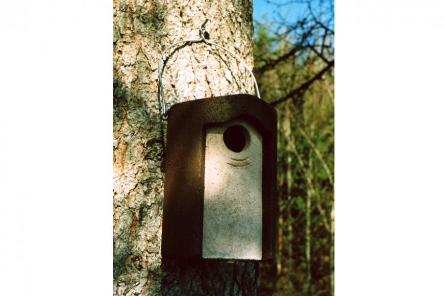 3s starling nest box. gardenature.co.uk