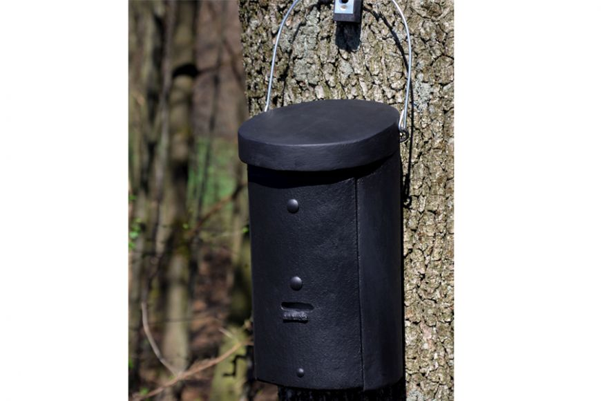 Colony bat box 2fs