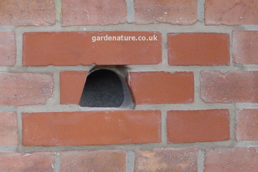 schwegler brick nest box 26