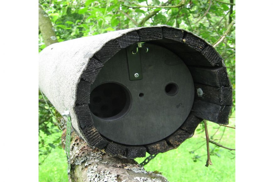 schwegler little owl box 20b