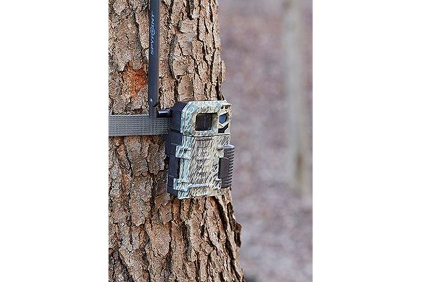 Spypoint Link Micro cellular camera