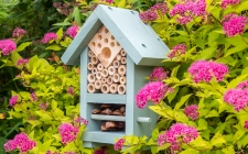 bee & bug biome | gardenature.co.uk