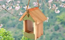 garden bird barn feeder | Gardenature