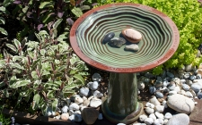 green bird bath - gardenature.co.uk