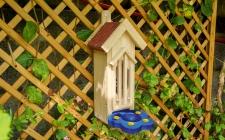 Butterfly Habitat | gardenature.co.uk