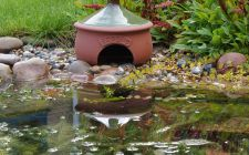 toad house frogilo, gardenature