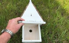 dovecote bird box back panel