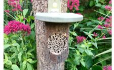 Mason bee log nester |gardenature