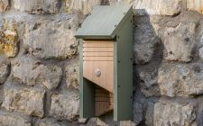 bat boxes | gardenature.co.uk