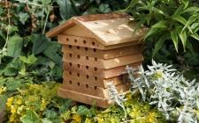 Small bee hive | gardenature.co.uk
