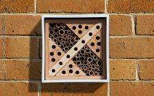 Urban bee box | gardenature.co.uk
