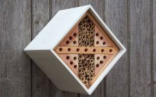 solitary bee box | gardenature.co.uk