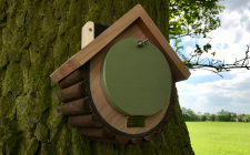 dormouse nesting boxes