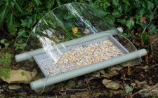 Archwat ground feeder | gardenature