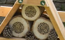 insect hotel from Gardenature