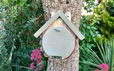 dormouse boxes | gardenature
