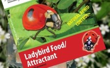 Ladybird Attractant | gardenature.co.uk