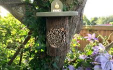 National Trust bee log | gardenature.co.uk
