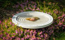 bird baths | gardenature.co.uk