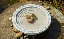 garden bird bath | gardenature.co.uk